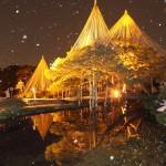 兼六園の雪吊り見物が冬旅行に超おすすめ!