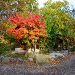 秋キャンプ|メープル那須高原キャンプグランドが超おすすめ!