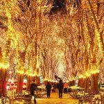 2018仙台光のページェント|クリスマスを彩る60万球の輝きが凄い!