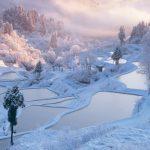 雪景色絶景はここ!冬の新潟県十日町市の棚田は見る価値あり!