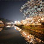 鳥取県の桜の名所、鳥取城跡・久松公園の桜の見ごろは!?