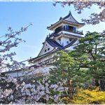 高知県の桜の名所、高知公園の高知城と桜の見ごろは!?