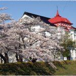 山形県の桜の名所、ロケ地にもなった鶴岡公園の桜!見ごろは!?