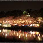 愛知県の桜の名所、岡崎公園は夜桜がおすすめ!見ごろは!?